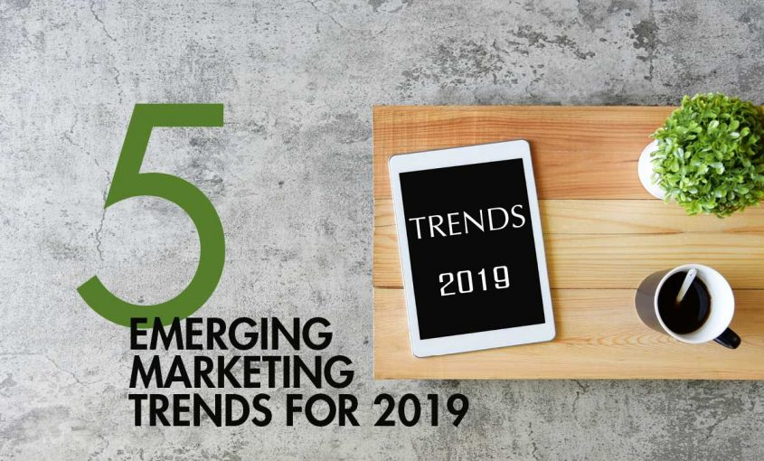 5 Emerging Marketing Trends for 2019 | Roop & Co.